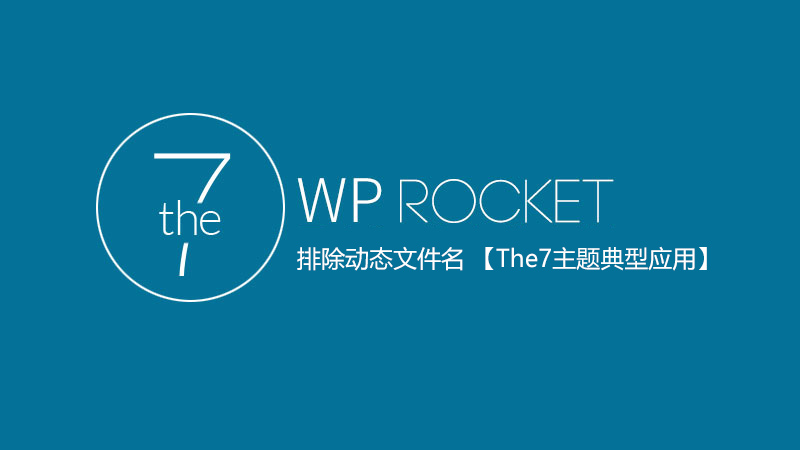 WP Rocket排除动态文件名